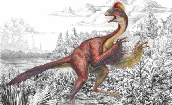 Anzu wyliei dinosaurio emplumado