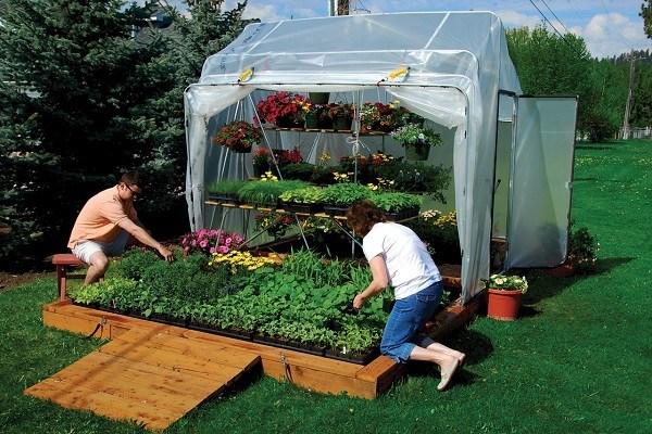 Ecosistema invernaderos caseros for Que es un vivero ornamental