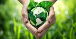 ONGs Ecologistas: las 20 mejores ONGs que cuidan el medio ambiente
