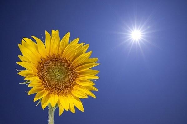 energia sol