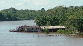 La región amazónica en España