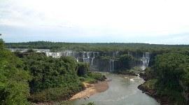 La Selva Misionera o Paranaense