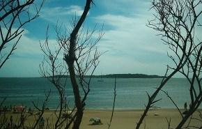 Anuncian la construcción de un hotel ecológico en Punta del Este