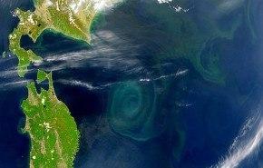 Dos remolinos gigantes de basura en el Océano Pacífico