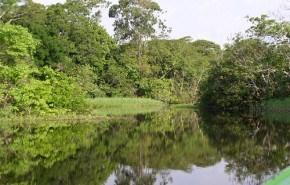 Hasta el hotel más ecológico daña al medio ambiente
