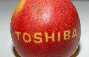 Toshiba lanzó al mercado las notebooks ecológicas