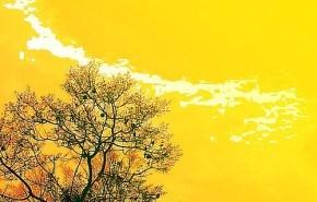 2007 fue el año más caluroso de la última década