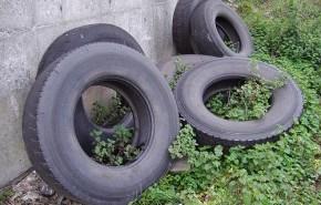 Aragón reciclará todos los neumáticos