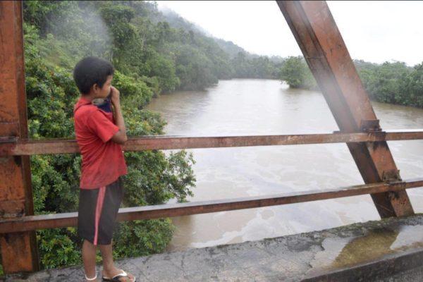 la-selva-amaznica-en-peligro-por-la-explotacin-petrolera-rios-contaminados