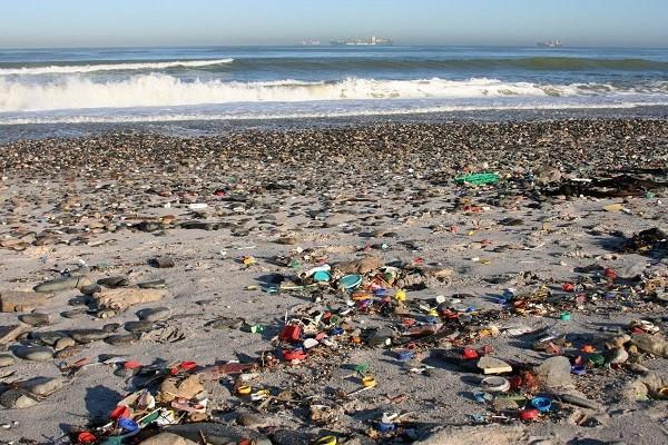 contaminaci n de mares cuando el mar se contamina. Black Bedroom Furniture Sets. Home Design Ideas