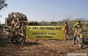 Greenpeace impide el avance de topadoras para el desmonte en Salta