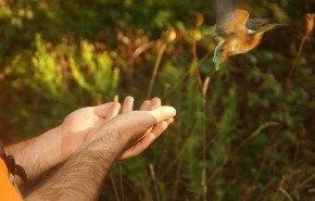 Natura 2000 acude a las fotos verdes para concientizar