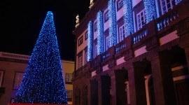 Árbol de navidad ecológico en Las Palmas de Gran Canaria
