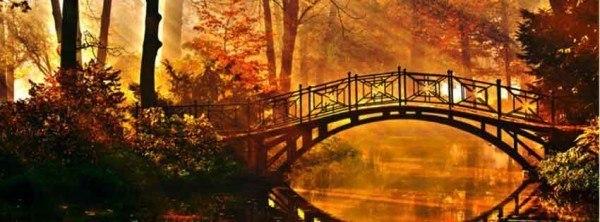 celebra-otoño-toma-una-foto