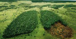 Contaminación | Qué es, Clases, Naturaleza y Hombre, Soluciones