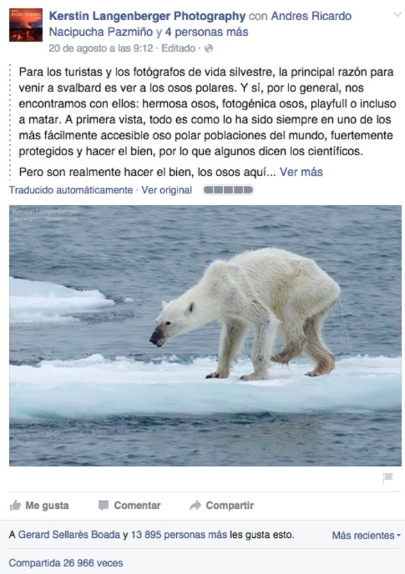 la-foto-de-una-osa-desnutrida-recuerda-que-el-cambio-climatico-es-real-imagen-de-facebook