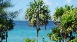 Se estrenó el documental cubano Cambio Climático: el reto continúa