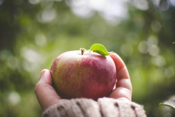 como-saber-en-2-segundos-si-la-produccion-de-fruta-verdura-es-organica
