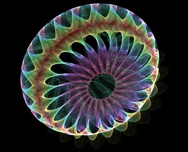 8-animales-que-brillan-en-la-oscuridad-criaturas-bioluminiscentes-medusa-arco-iris