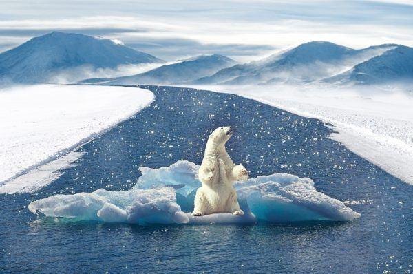 Cambio climatico causas efecto invernadero
