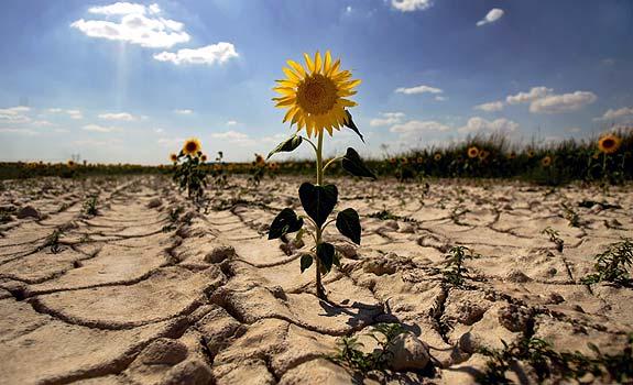 efecto-invernadero-consecuencias-sequias
