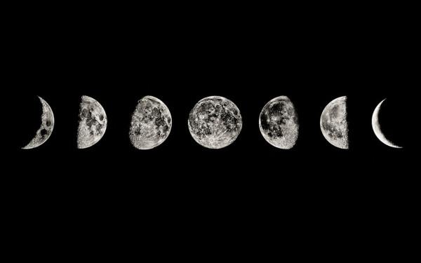 las-fases-lunares-y-la-agricultura-ecologica-fases-lunares