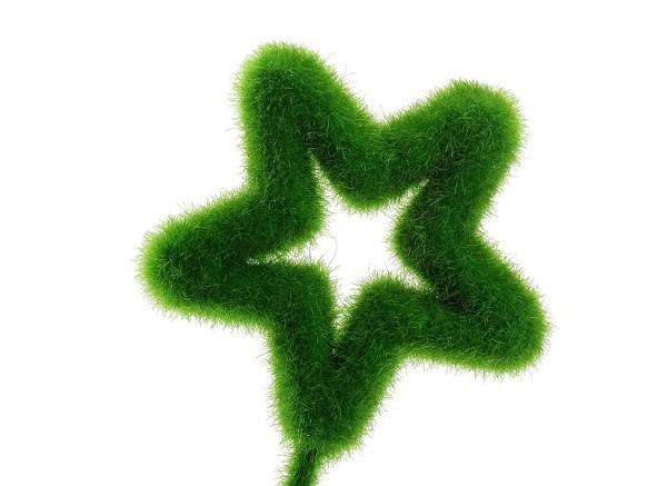 De 20 bonitas maneras de decorar tu casa con plantas de for Maneras de decorar tu casa