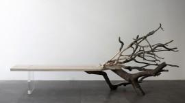 Muebles elegantes con ramas de los árboles caídos