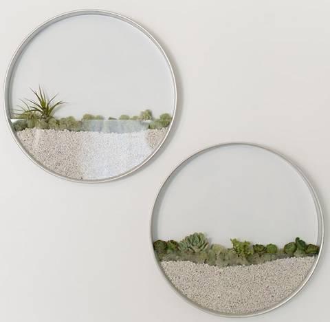 12-bonitas-formas-de-tener-plantas-de-interior-enmarcados