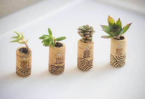 12-bonitas-formas-de-tener-plantas-de-interior-tapones-de-corcho