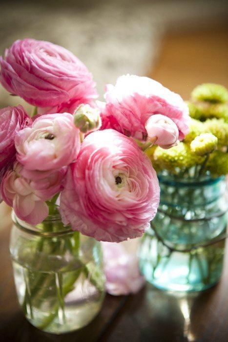cuales-son-las-flores-de-la-primavera-ranunculos