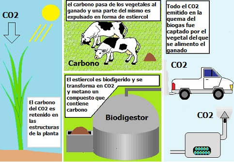 biogas-biocombustible