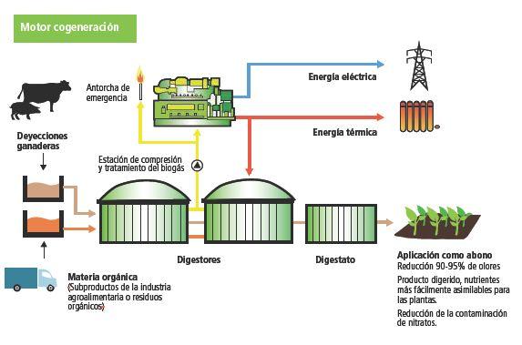 biogas-esquema-biogas