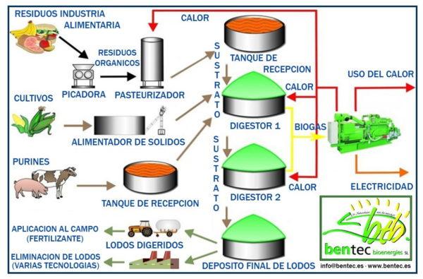 biogas-esquema-produccion