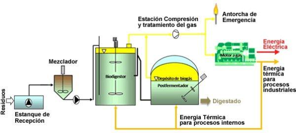 biogas-planta-como-producen-biogas