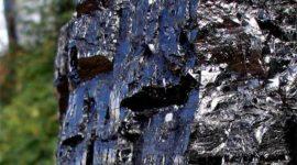 Combustibles Fósiles – Características, origen, aplicaciones y efectos secundarios