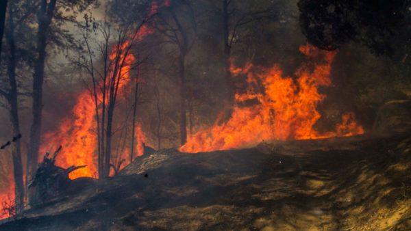 contaminacion-atmosferica-incendios-forestales