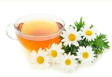 plantas-aromaticas-manzanilla