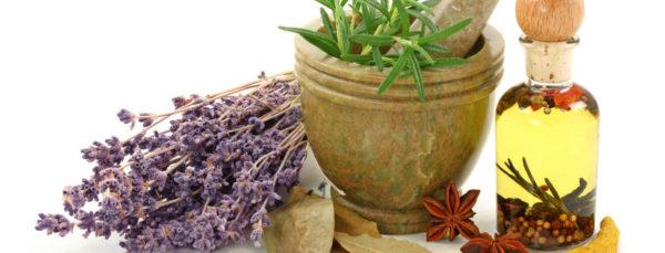 plantas-aromaticas-medicina
