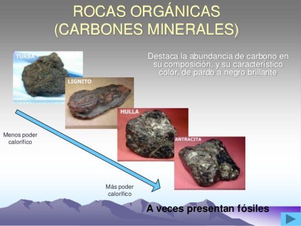 combustibles-fosiles-rocas-organicas