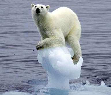 la-contaminacion-calentamiento-global