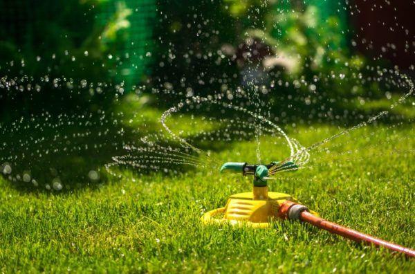 11 maneras inteligentes de ahorrar agua en casa riego