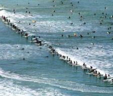 """Surfers de todo el mundo se subieron a la """"ola verde"""""""