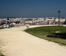 Crearán el primer barrio ecológico en Madrid