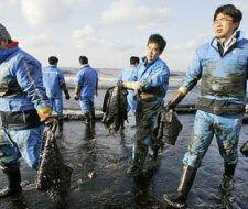 Corea del Sur enfrenta el mayor desastre ecológico de su historia