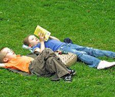Lanzan colección de libros ecológicos para niños