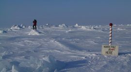 El Polo Norte podría desaparecer en 2020