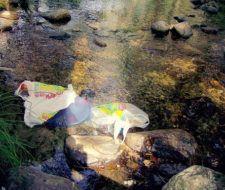 México podría prohibir la utilización de bolsas de plástico