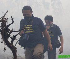 Los bosques tropicales de Indonesia corren peligro por los incendios