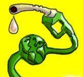 Los grupos ecologistas piden a la ONU que prohíba los cultivos destinados a los biocombustibles